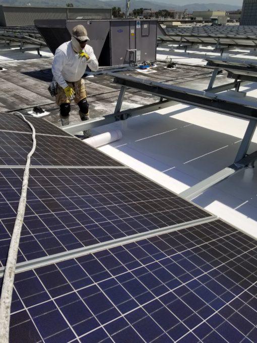 California Department Store Solar Challenge